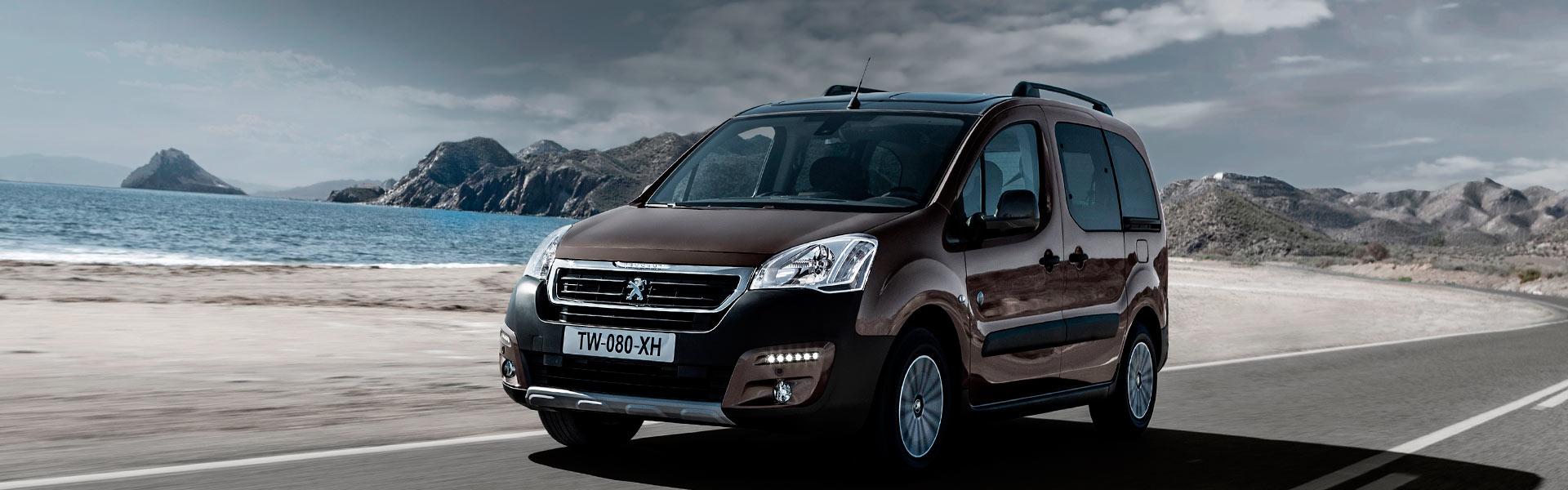 Запчасти на Peugeot Partner